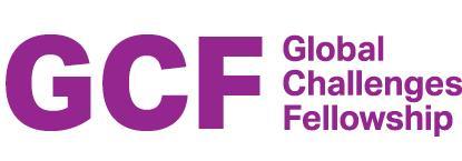 Global Challenges Fellowship